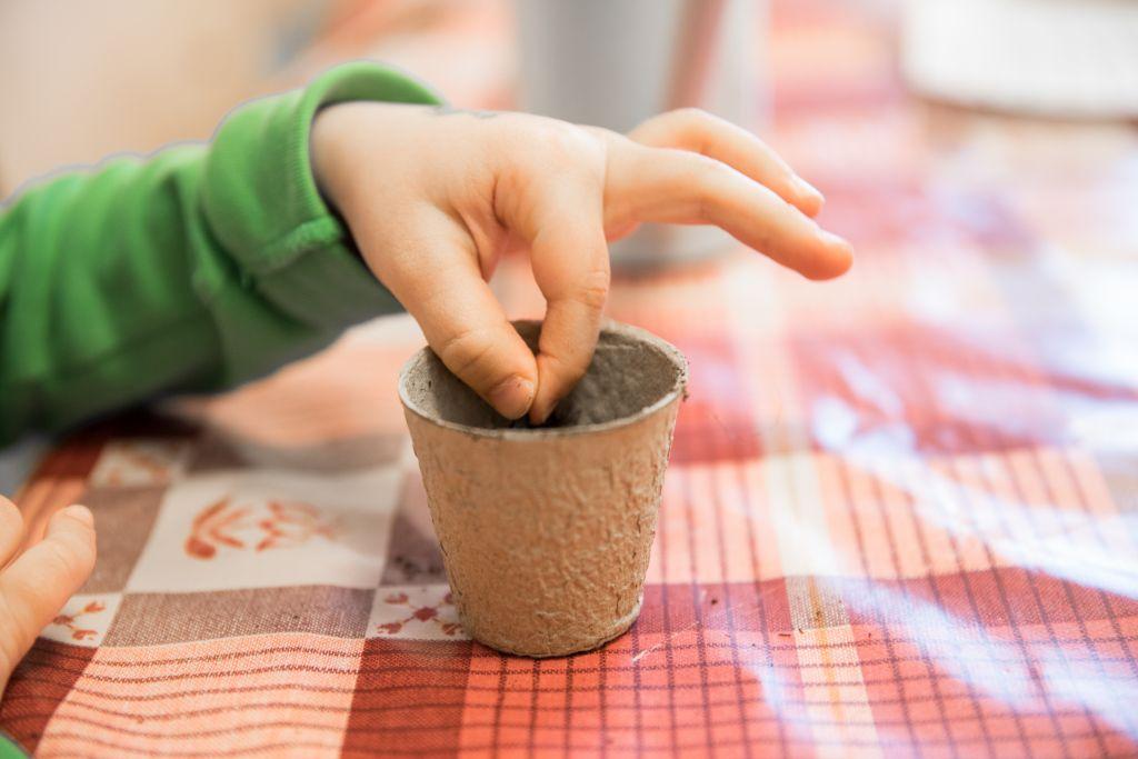 Perhekerhon kävijä istuttaa siemenen multaan